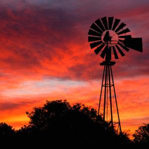 Rodney Johnson - Sunrise Windmill 2997
