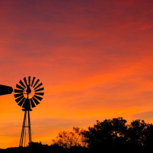 Rodney Johnson - Windmill at Sunrise 2836
